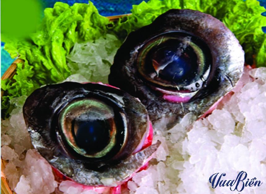 Mắt Cá Ngừ